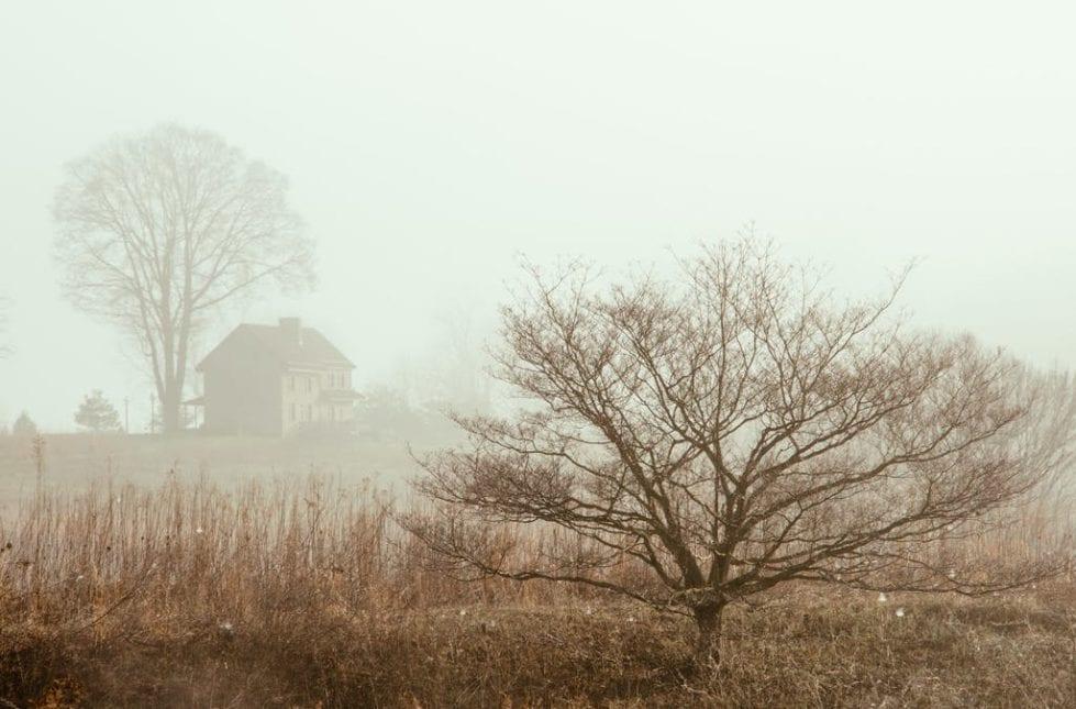 Longwood Gardens in winter.
