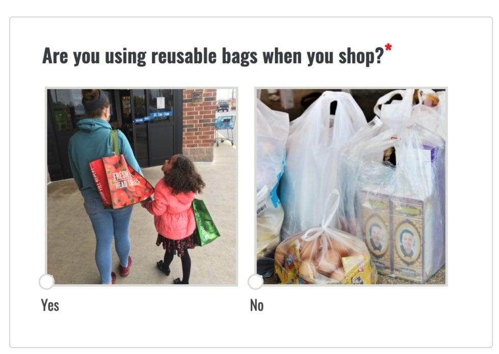 DNREC is surveying consumers on Delaware's ban on single-use plastic bags. (DNREC) user interface