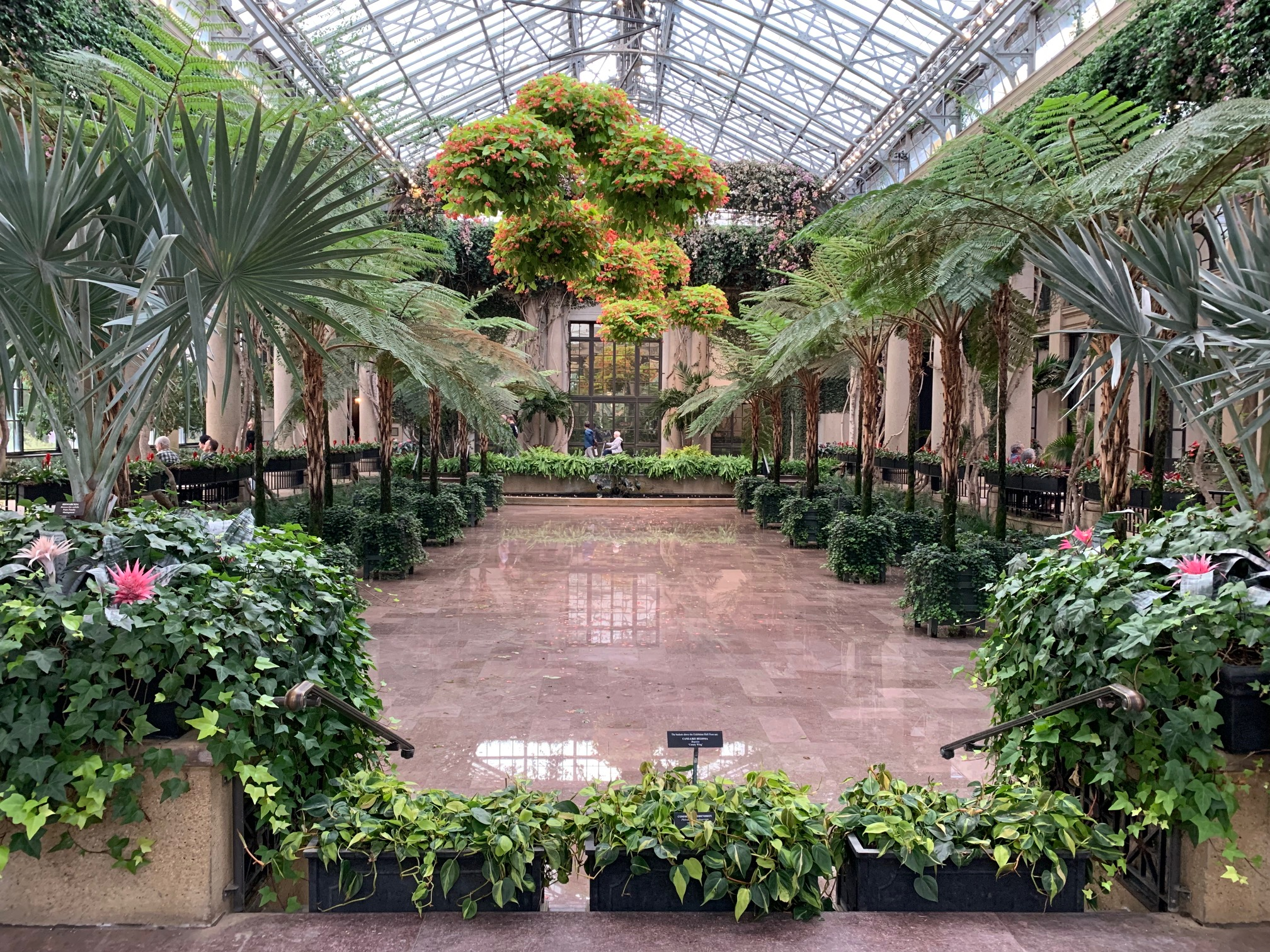 """Featured image for """"Longwood Gardens reopened Wednesday after visitor center crash"""""""