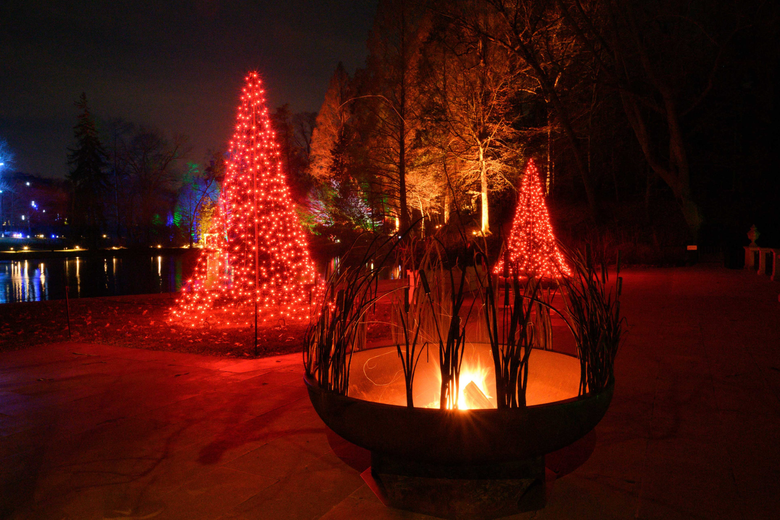 """Featured image for """"Longwood Christmas embraces opposites with fire and ice theme"""""""