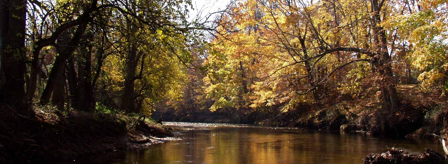 """Featured image for """"White Clay Creek stocked with 1,000 pounds of rainbow trout"""""""